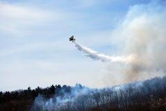 Forest Fire in Northern New Jersey Stock Image