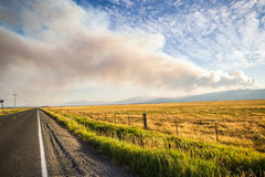 Forest fire over wheat field and highway Royalty Free Stock Photography