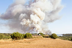 Forest fire in Portugal Stock Photo