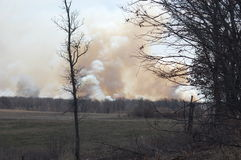 Forest Fire. A Prescribed burn at Wildlife refuge in Minnesota Stock Photography