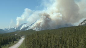 Forest fire and road stock footage