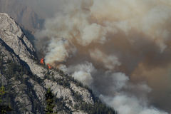 Forest Fire in the Rocky Mountains 02 Stock Images