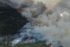 Forest Fire in the Rocky Mountains 02. Huge flames burning on a ridge in the Rocky Mountains Stock Image
