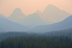 Forest Fire smoke. In the Rocky Mountains of Alberta Royalty Free Stock Photos