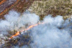 Forest fire, top view Royalty Free Stock Photography