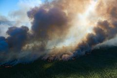 Forest fire, top view. Awful wildfire from the bird`s eye view Royalty Free Stock Images