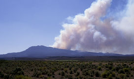 Forest fire in Utah Royalty Free Stock Image