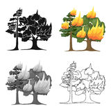 Forest fire vector icon in cartoon style for web Royalty Free Stock Photo