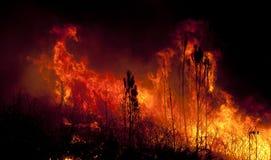 Forest Fire vicino ad una casa Fotografia Stock