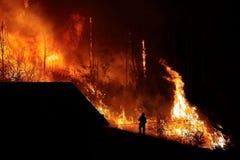 Forest Fire vicino ad una casa, siluetta del vigile del fuoco Fotografia Stock
