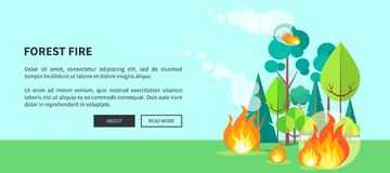 Forest Fire Web Poster with Inscription. Vector. Illustration of raging wildfire that has engulfed lush trees, bushes and grass on background of blue sky Stock Photography
