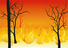 Forest fires. Illustration, danger fire Royalty Free Stock Photos