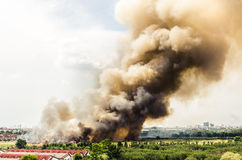 Forest fires in the city on a hot oversupply Royalty Free Stock Photo