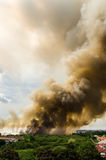 Forest fires in the city on a hot oversupply Royalty Free Stock Photos