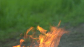 Forest fires HD stock footage