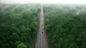 Forest fires. A lonely road in the forest among the fire smoke and smog. The concept of protecting forests and the