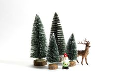 Forest firs reindeer and gnome Stock Photos