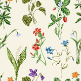 Forest flowers pattern. Vector pattern of the various wildflowers Royalty Free Stock Photo