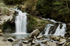 Forest flowing waterfall high up in the mountains of the Carpathians with noise flows down on a background of forest. Forest flowing waterfall high up in the royalty free stock image