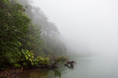 Forest at foggy volcano crater lake. La Fortuna Costa Rica royalty free stock photography