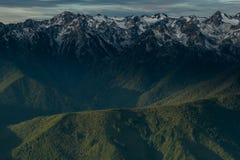 Forest Follows Ridge Below Snow a couvert des montagnes images libres de droits