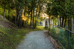 Forest Footpath at Sunset Stock Photography