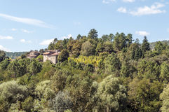 Forest of France. With trees on a sunny day, you can see some houses in one side Royalty Free Stock Photography