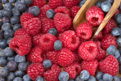Forest fresh raspberryand blueberry macro. With a wooden shovel Stock Photography
