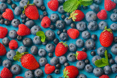 Forest fruit berries assorted mix in studio on dark background Stock Images