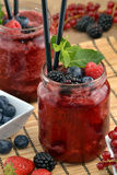 Forest fruit cocktail. Stock Images