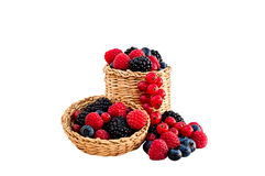 Forest Fruit i en vide- korg royaltyfri foto