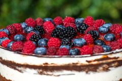 Forest fruit moos cake with blackberry , blueberry and raspberry. Forest fruit moos cake with fresh blackberry , blueberry and raspberry royalty free stock images