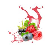 Forest fruit splash Stock Images