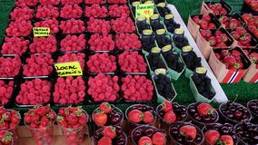 Forest fruit such as blueberries, raspberries, strawberries, and cherries with a price tag, Bergen, Norway royalty free stock photography