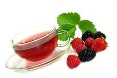 Forest Fruit Tea Royalty Free Stock Image