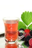 Forest fruit tea Stock Images