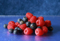 Forest fruits Stock Images