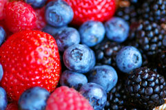 Forest fruits - berries. Closeup of forest fruits (blueberries,strawberries, blackberries Stock Photography