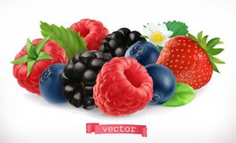 Forest fruits and berries. Raspberry, strawberry, blackberry and blueberry. 3d vector icon. Forest fruits and berries. Raspberry, strawberry, blackberry and stock illustration
