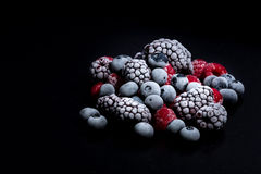 Forest fruits frozen Royalty Free Stock Photo