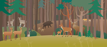 Forest Full Of Animals Stock Image