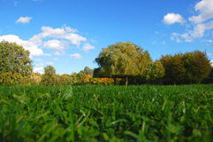 Forest and garden under blue sky at fall Royalty Free Stock Photography