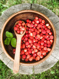 Forest gift. Wild strawberries in an earthenware basin on a bole with a wooden spoon Stock Photos