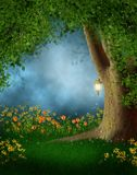Forest glade with flowers Royalty Free Stock Photography