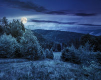 Forest glade on hillside at night. Glade with green grass near forest on hillside in mountains at night in full moon light Stock Photo