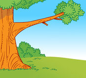 Forest glade with a tree. The illustration shows a portion of a large tree in a forest glade in a cartoon style Stock Photo