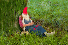 Forest gnome sleeping. Funny gnome sleeping under a tree in the forest Royalty Free Stock Photography