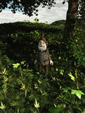 Forest Gnome Royalty Free Stock Image