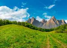 Forest on grassy hillside in tatras. Composite summer landscape. Path through the forest on grassy hillside in High Tatras. beautiful summer weather with blue Royalty Free Stock Photos