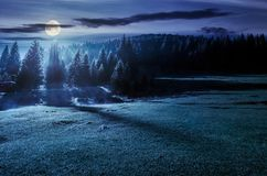 Forest on grassy meadow at foggy night. In full moon light. lovely nature scenery with forested hill in the distance Royalty Free Stock Image